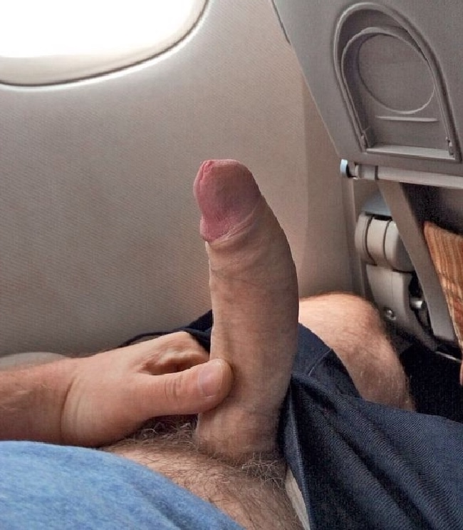 Cock On Plane